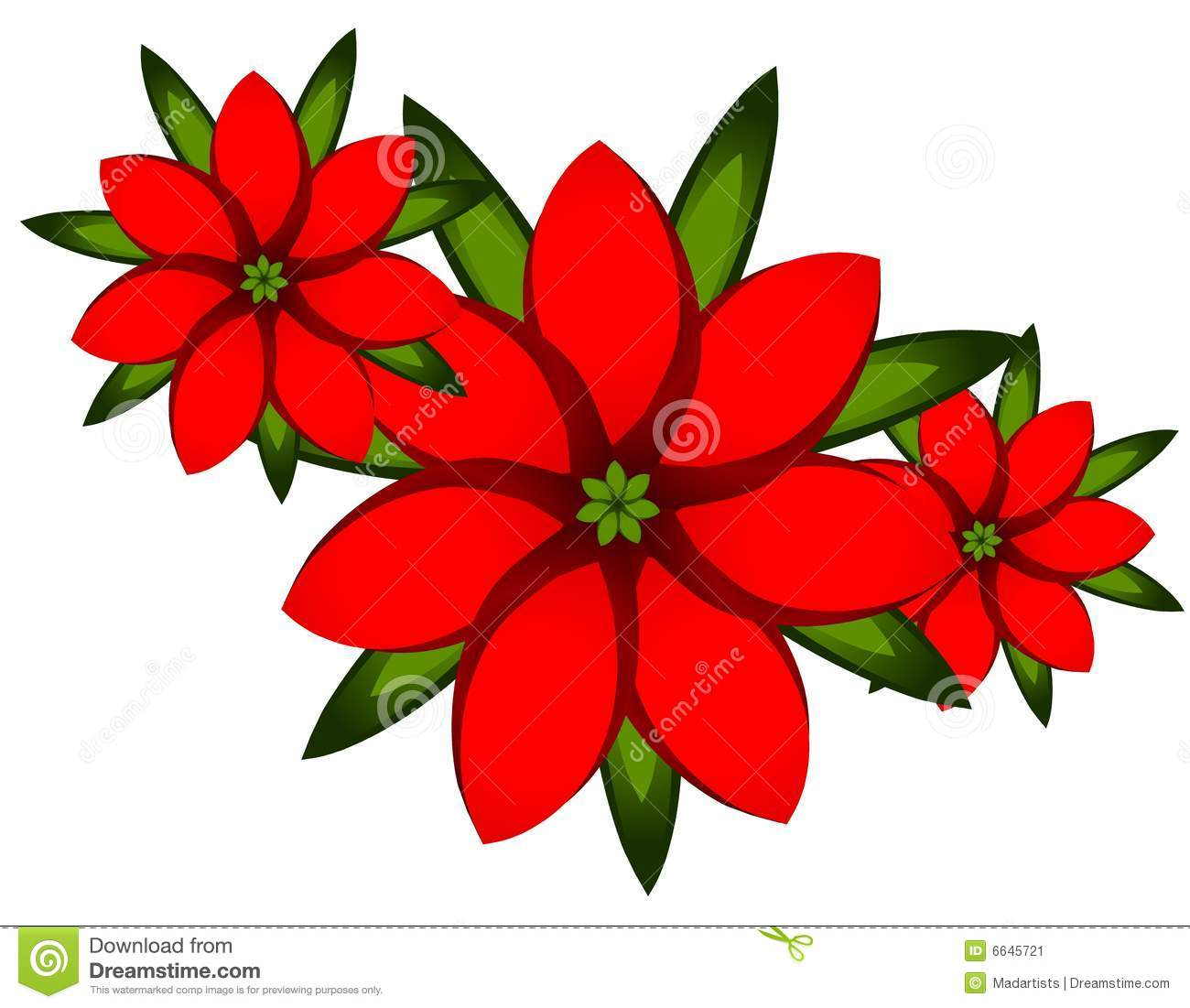 red xmas poinsettia clip art stock image - Christmas Poinsettia