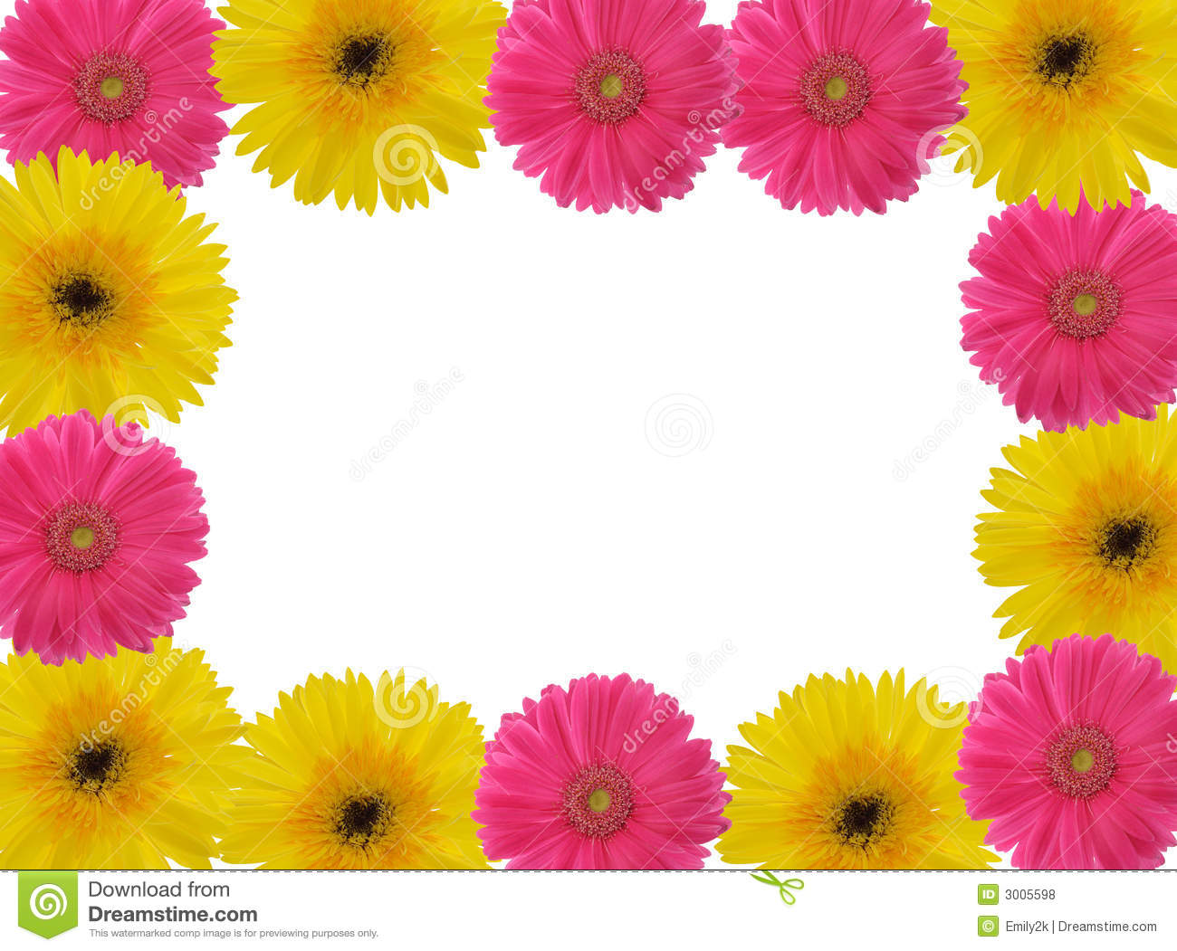 Red And Yellow Gerber Daisy Royalty Free Stock Photos