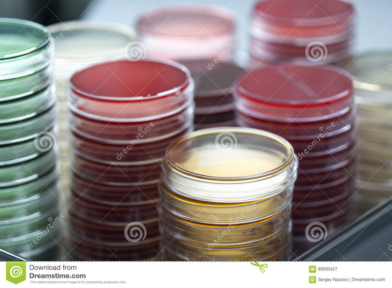 lab of microbiology Microbiology testing laboratory microbiology laboratory emsl analytical, inc offers a complete array of microbiology laboratory testing services available at our nationwide laboratory locations.