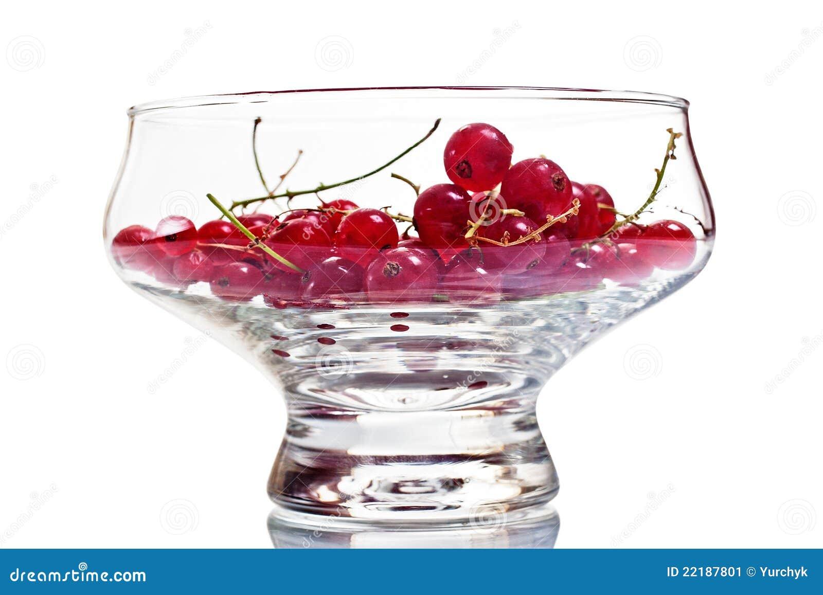 Redcurrant γυαλιού κύπελλων μούρ&om