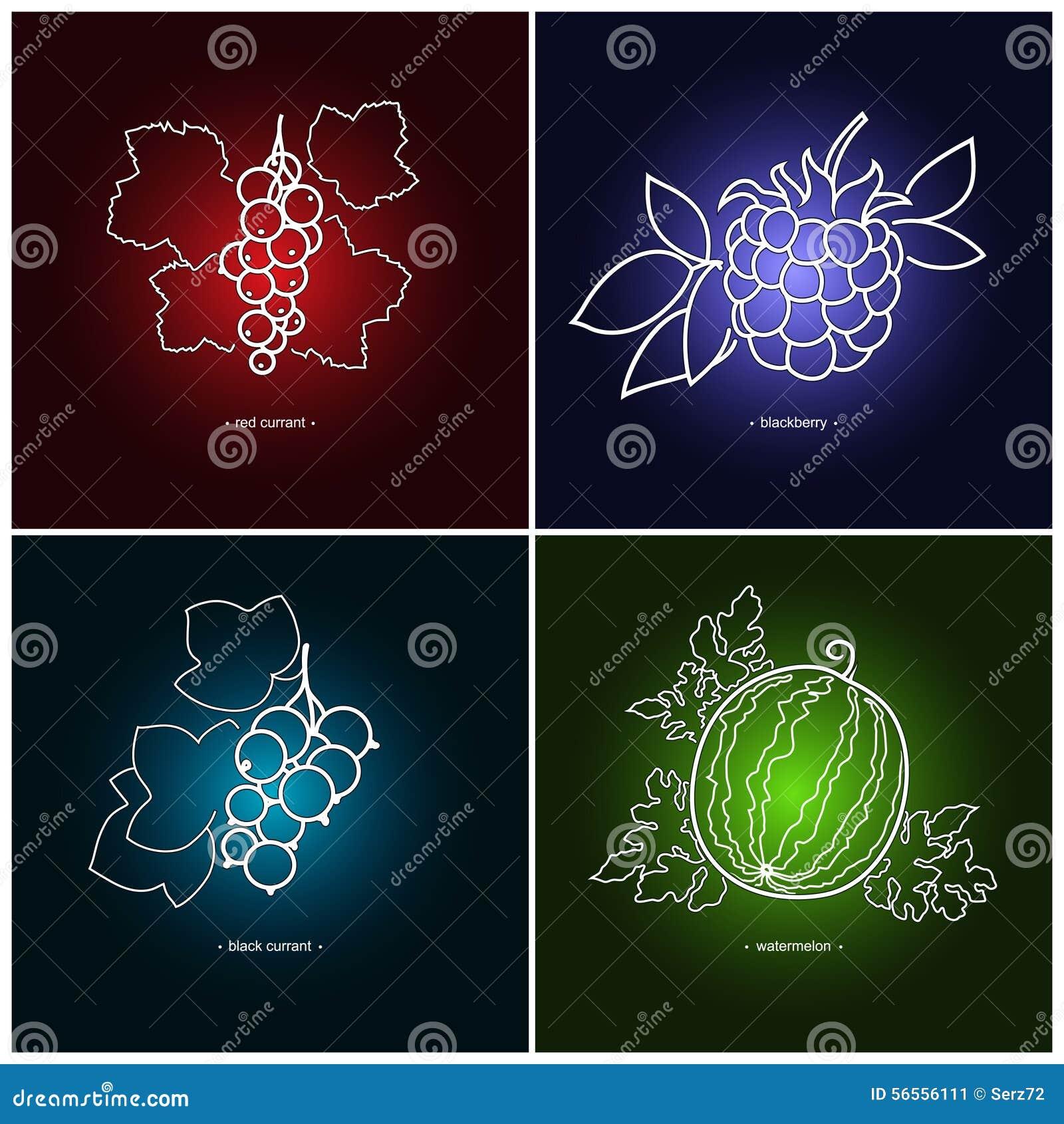 Download Redcurrant, Blackberry, ριβήσιο, καρπούζι Διανυσματική απεικόνιση - εικονογραφία από μούρων, σιτηρέσιο: 56556111
