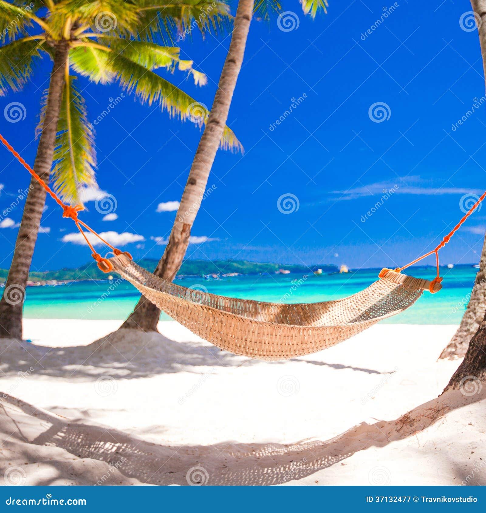 Rede da palha à sombra da palma em tropical