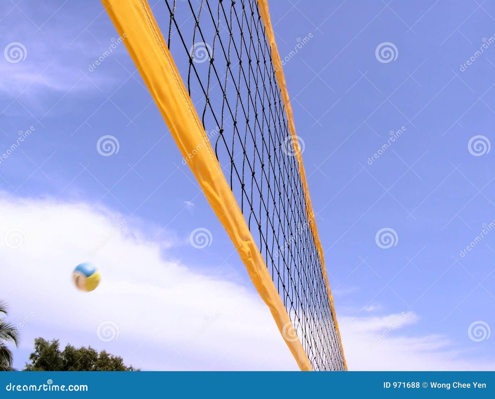 Rede do voleibol com esfera