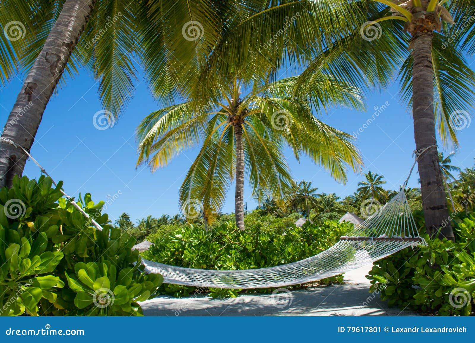 Rede na praia tropical em Maldivas