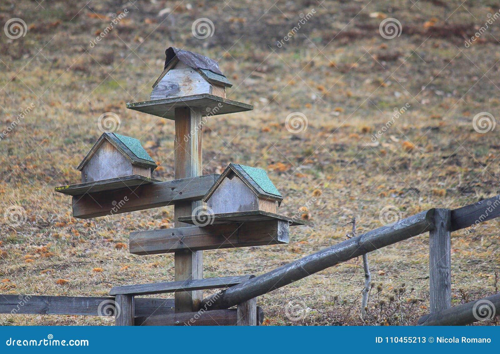 Reden som byggs för fåglar