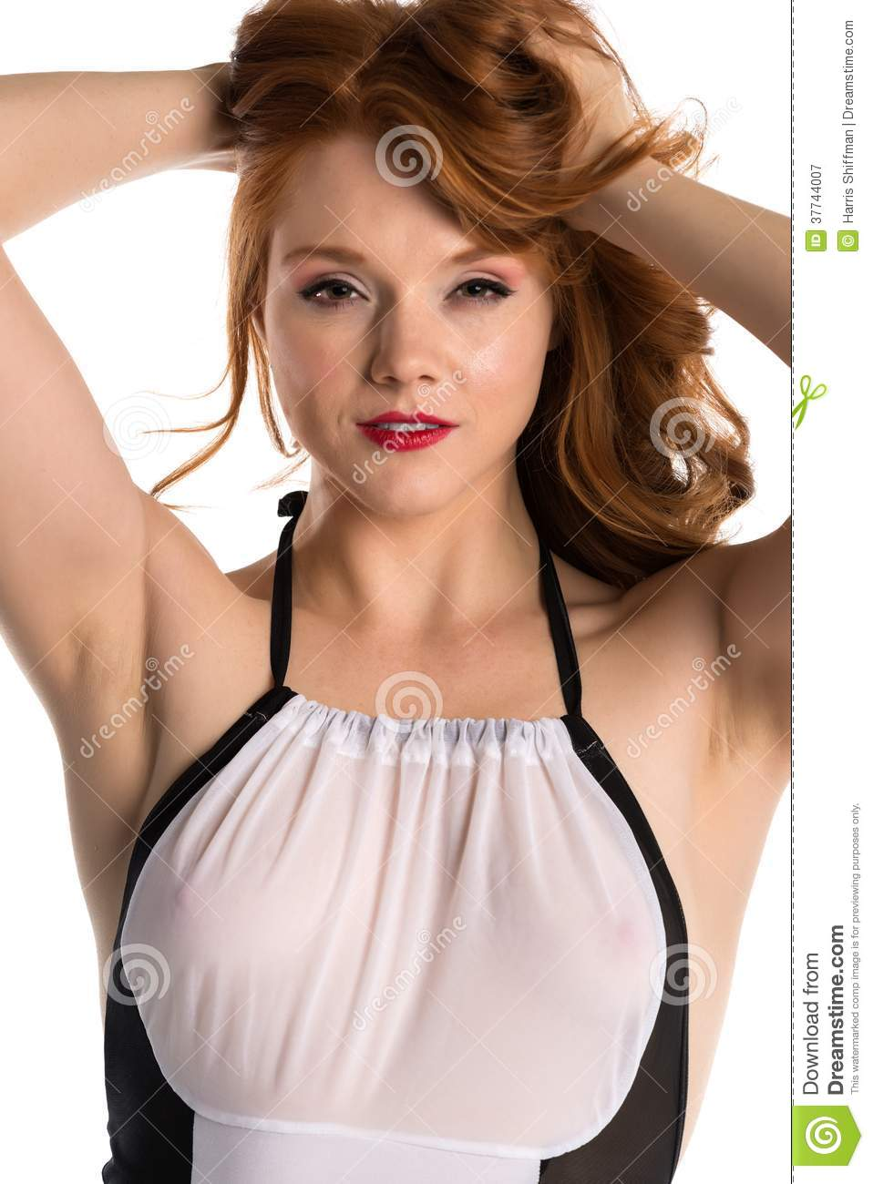 Redhead Royalty Free Stock Photography Image 37744007