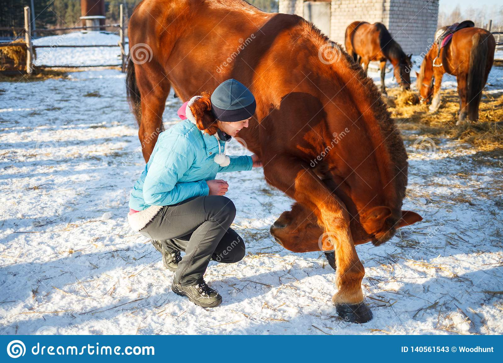 Redhead Girl taught a red horse to swear and dance