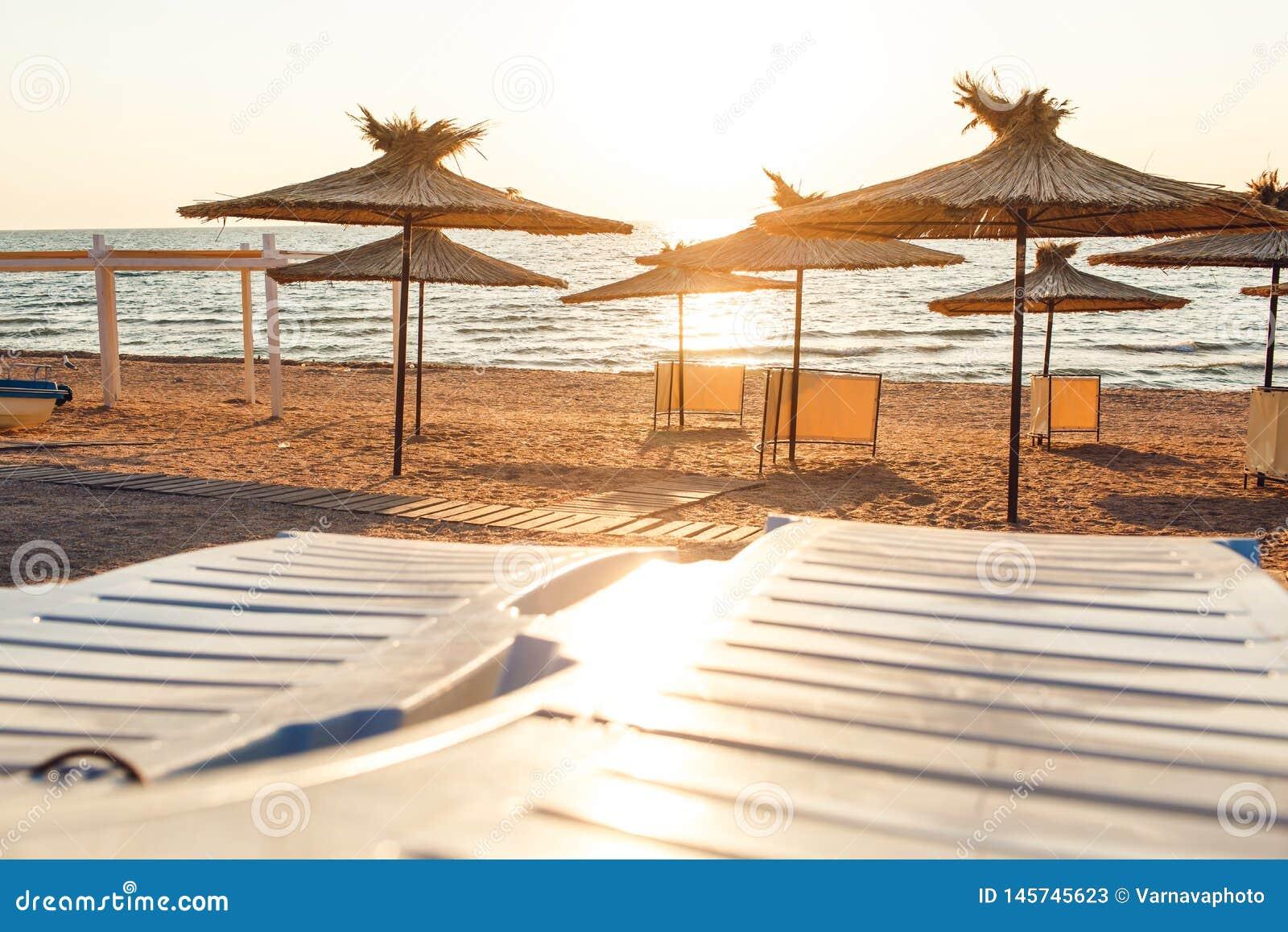 Reed beach umbrellas and sunbeds on sandy seashore in sun.