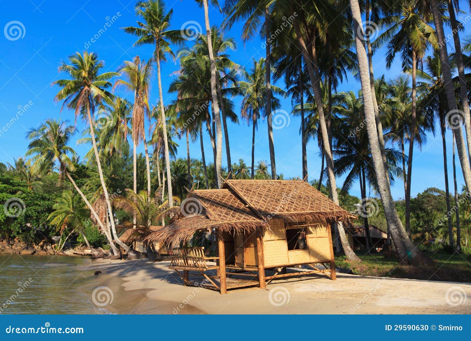 Tropical Beach Huts: Beautiful Tropical Beach With White Sandy Beach From