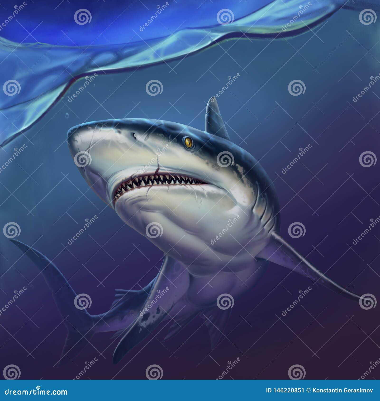 Reef shark on depth realistic background illustration.