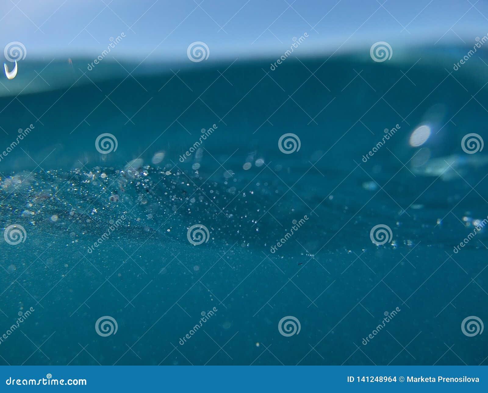 Reef, snorkeling, different world, diving, ocean