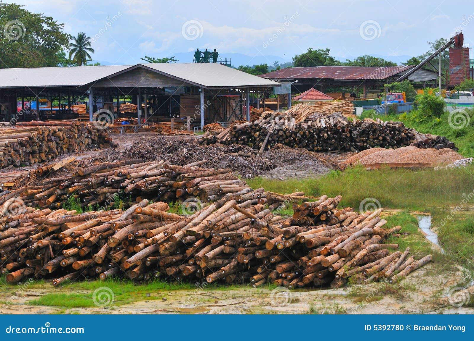 Reeks 6 van de Zaagmolen van het hout