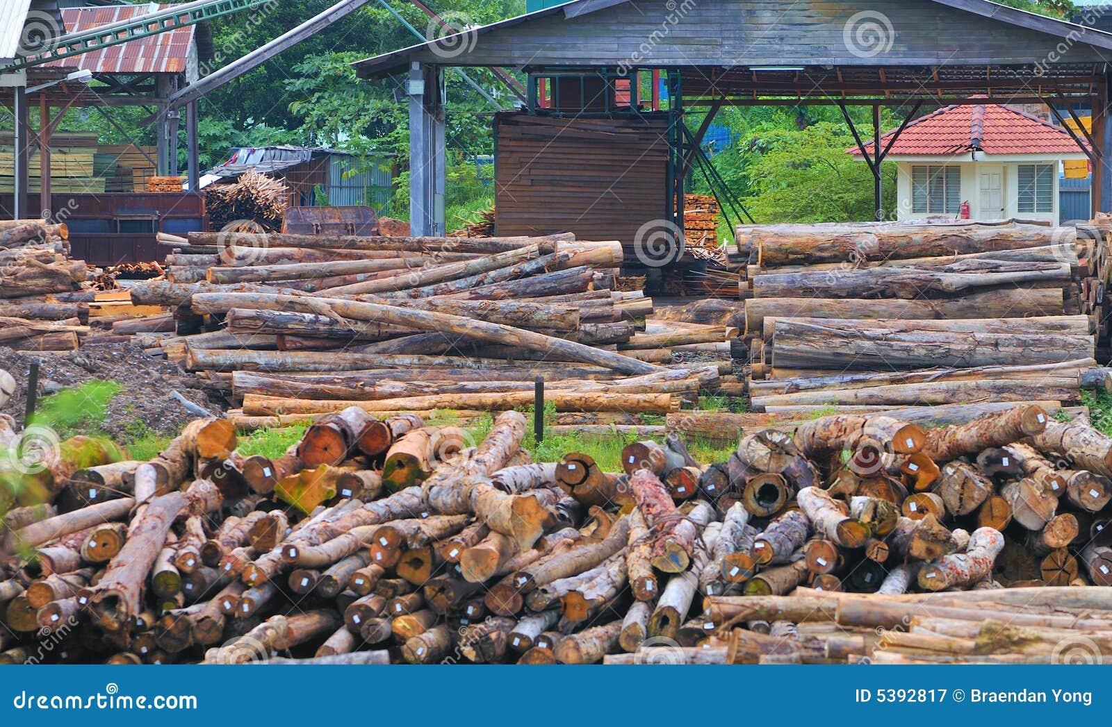 Reeks 7 van de Zaagmolen van het hout