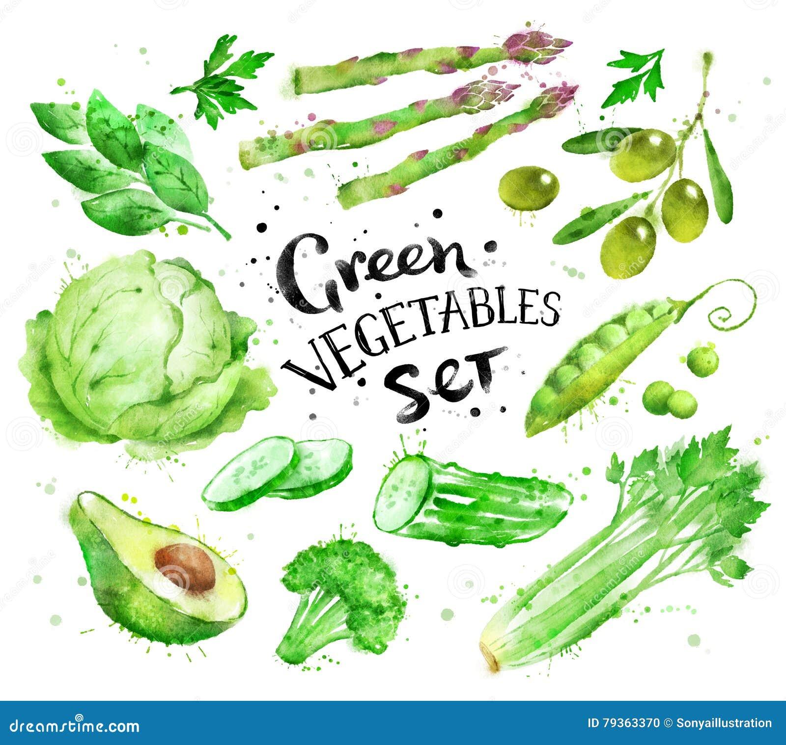 Reeks groene groenten