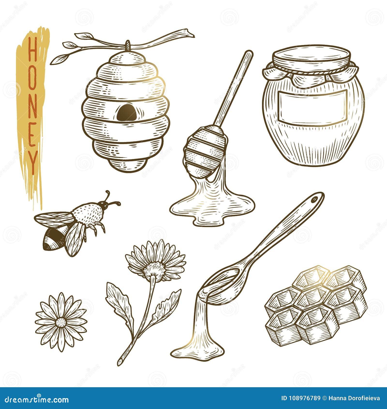 Reeks honingselementen Vectorschets van zoet die biologisch product op achtergrond wordt geïsoleerd