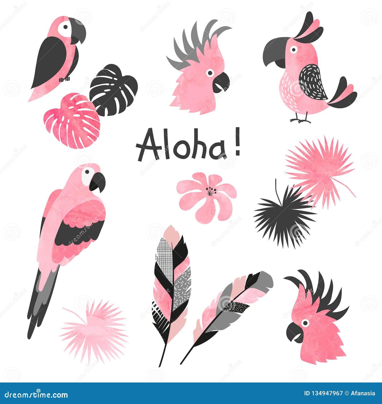 Reeks leuke roze waterverfpapegaaien Vectorinzameling van tropische vogels