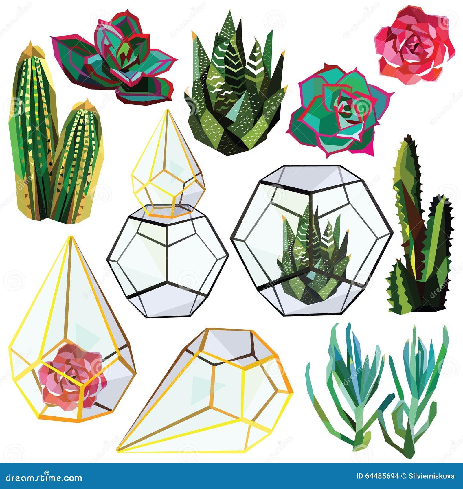 Reeks van cactus