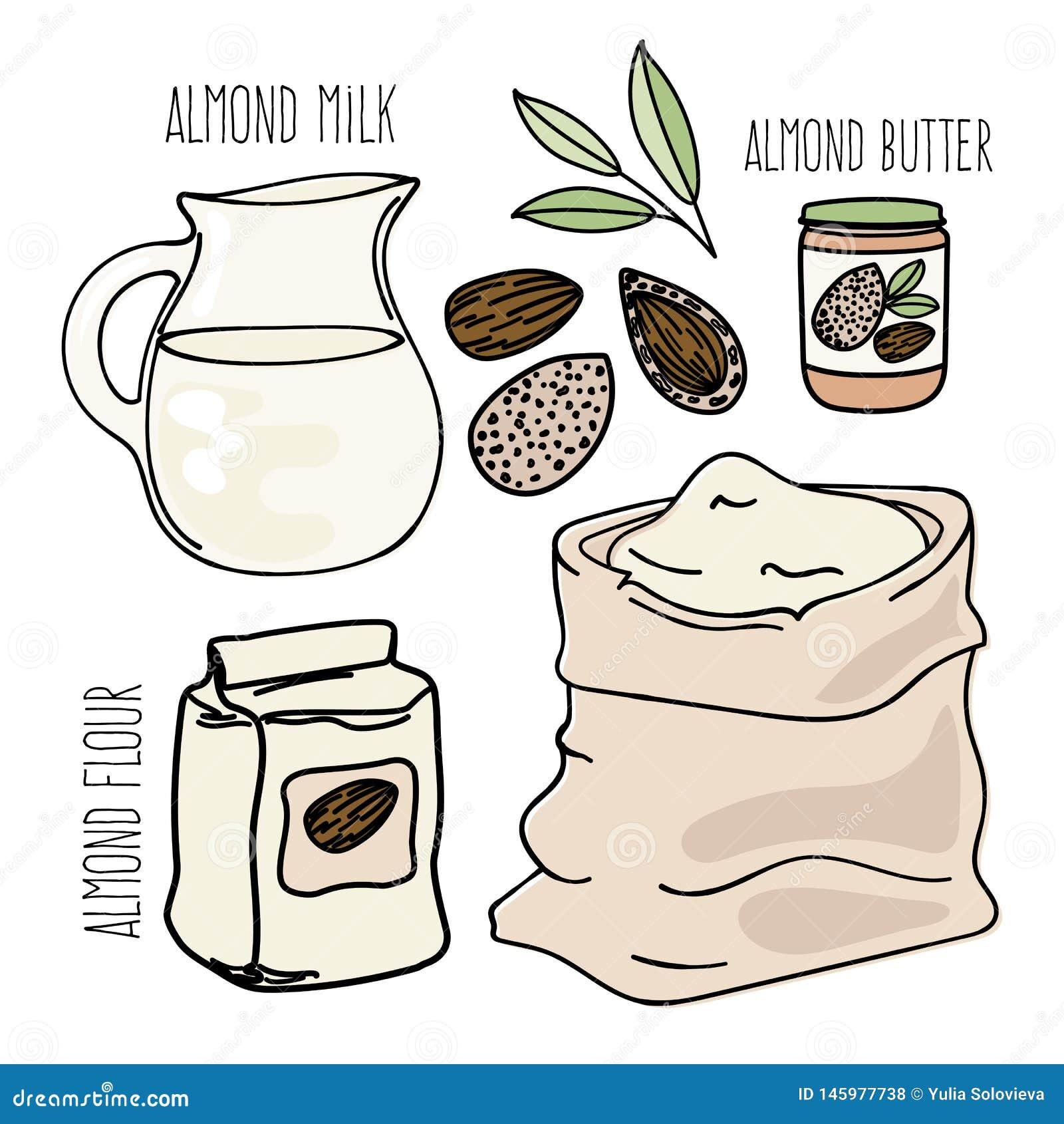 Reeks van de het Dieet Vectorillustratie van Paleo van het AMANDELvoedsel de Vegetarische