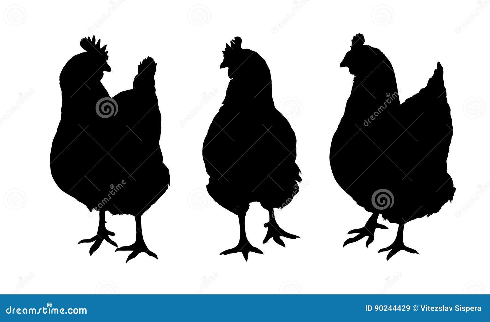 zwarte hanen VS witte lullen