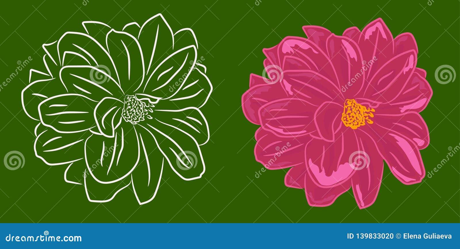Reeks van twee de contouren aangegeven van bloemen en met het vullen
