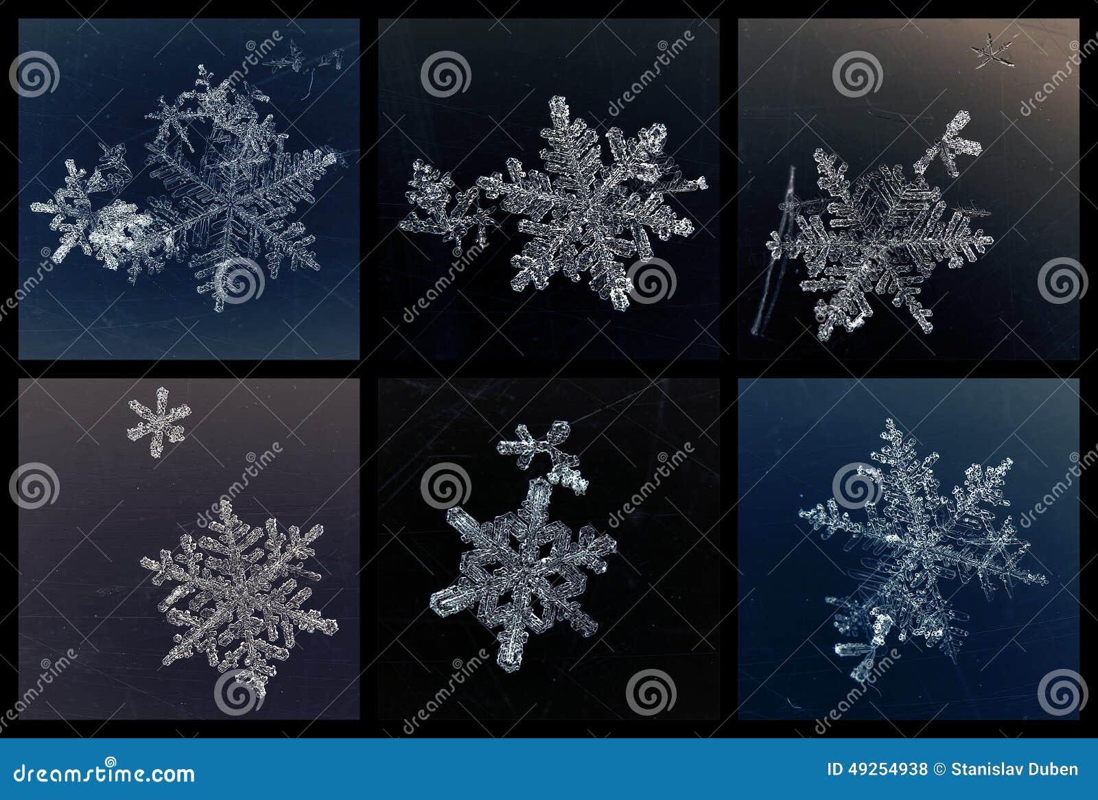 Reeks van zes sneeuwvlokken