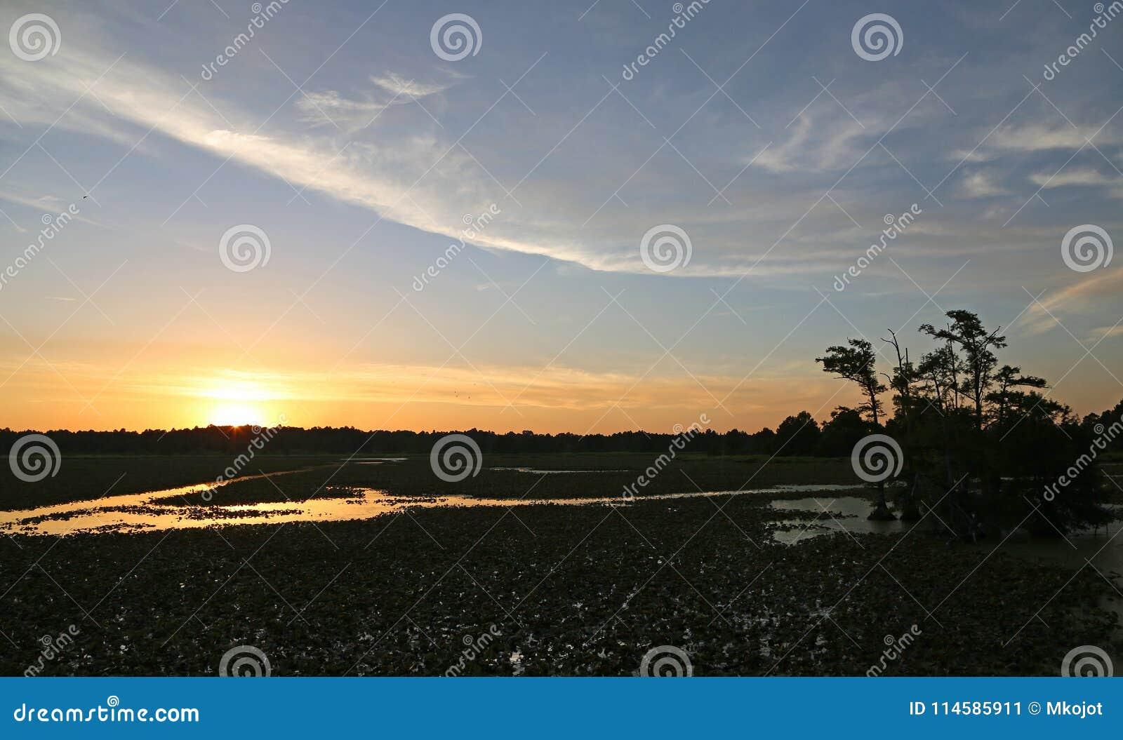 Sunset on Reelfoot Lake