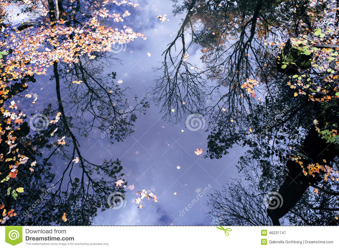 Reflection of autumn trees in water.
