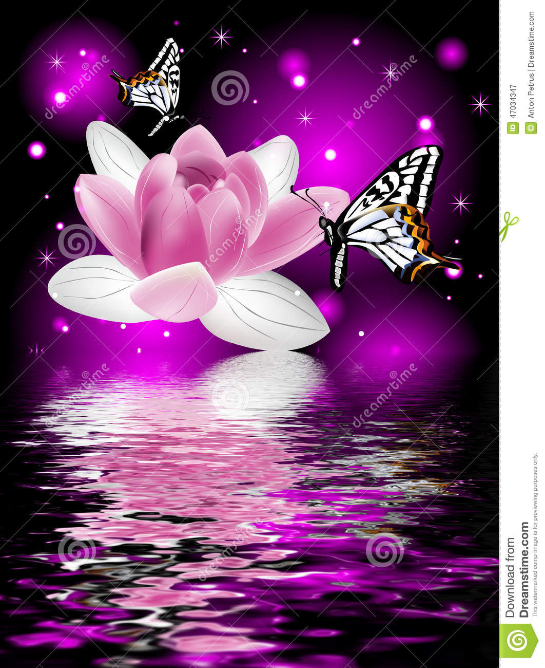 Reflection Of A Beautiful Lotus Flower With Butterflies Beauty Butterfly