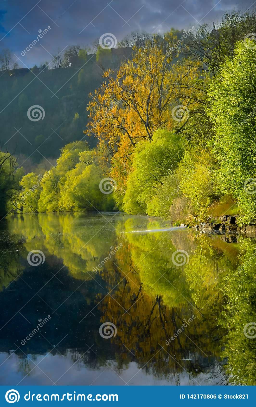 Reflection on the river Portrait