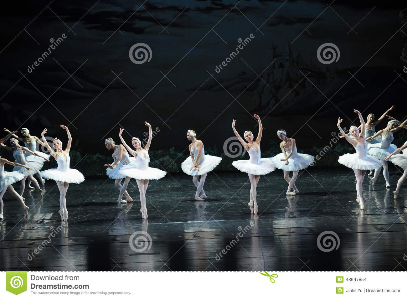 Reflections On The Water-ballet Swan Lake Editorial Stock ...
