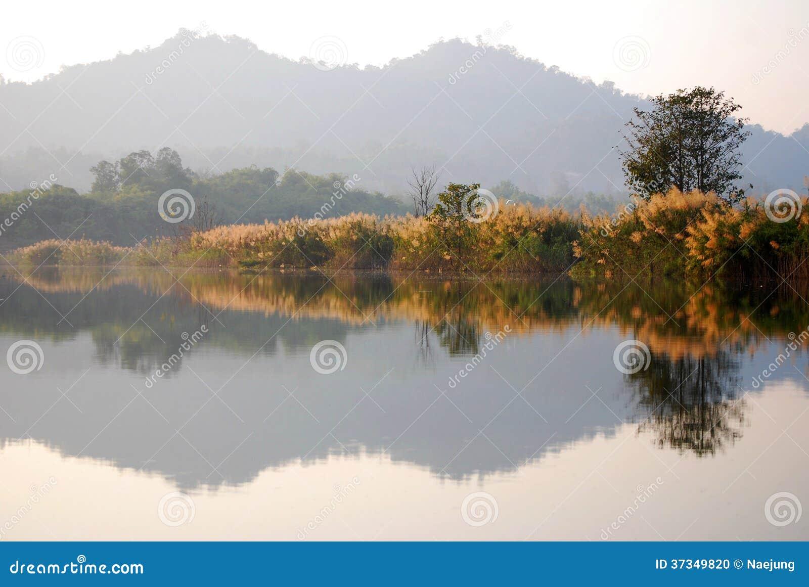 Reflektera landskapet