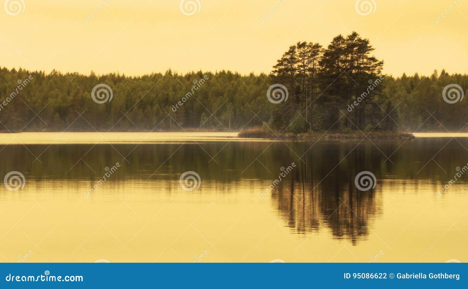 Reflexão bonita da hora dourada da ilha pequena no lago
