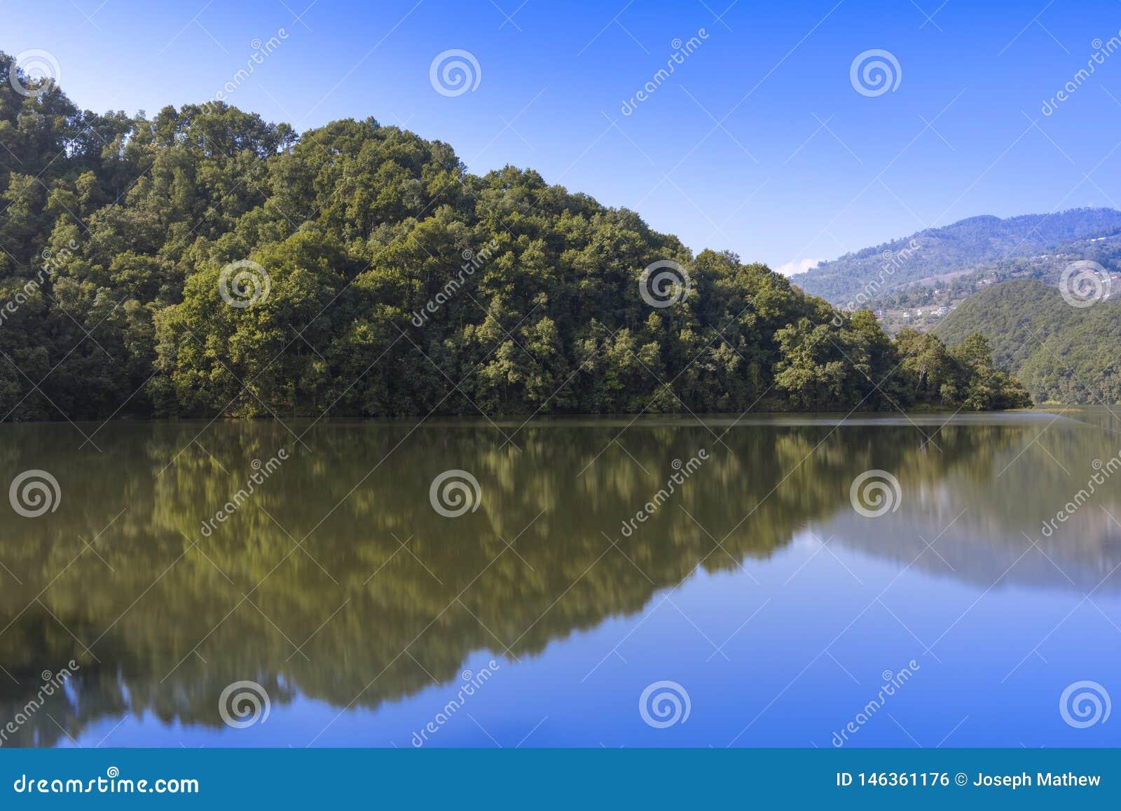 Reflexão da floresta no lago