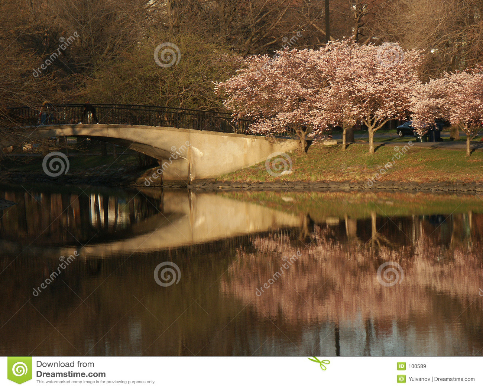 Reflexão da ponte