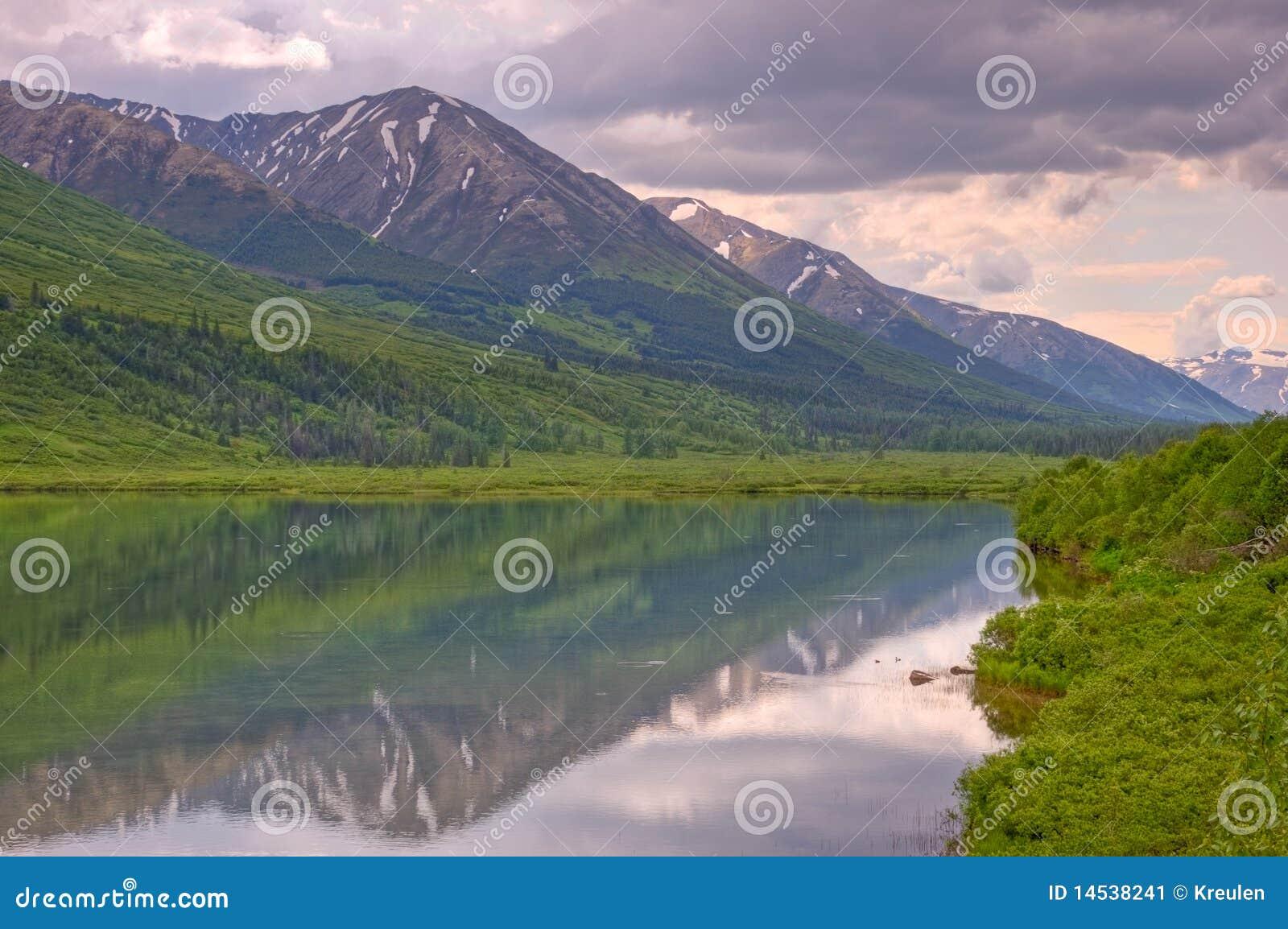 Reflexão do lago na floresta nacional de Chugach