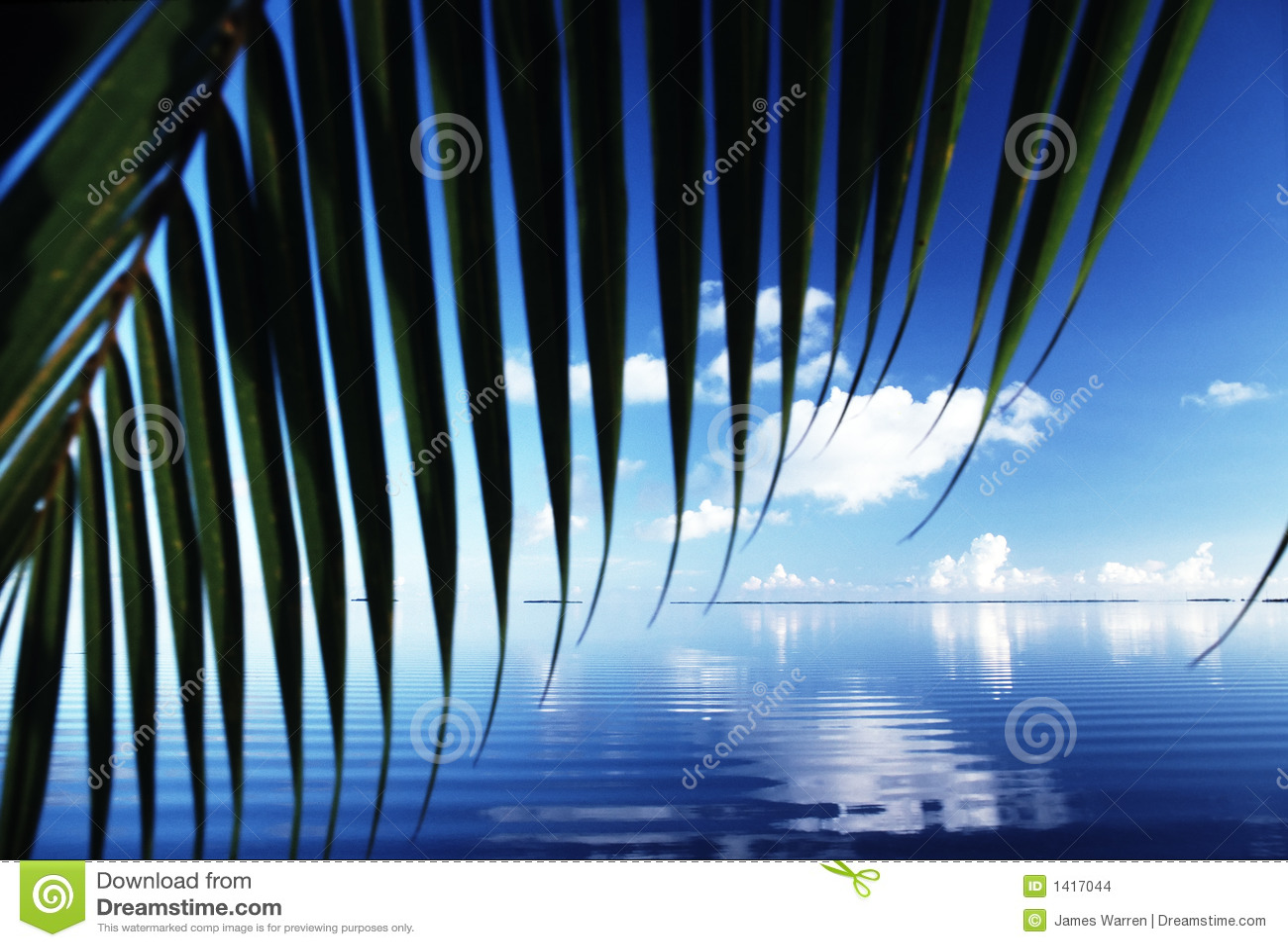 Reflexões de Florida