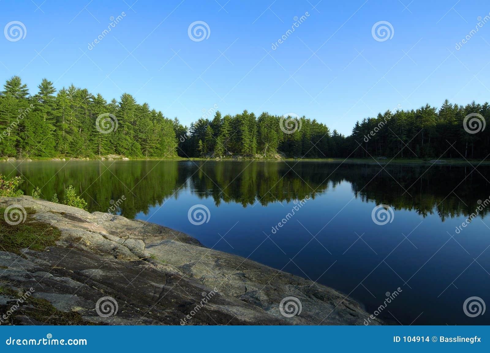 Reflexões do lago