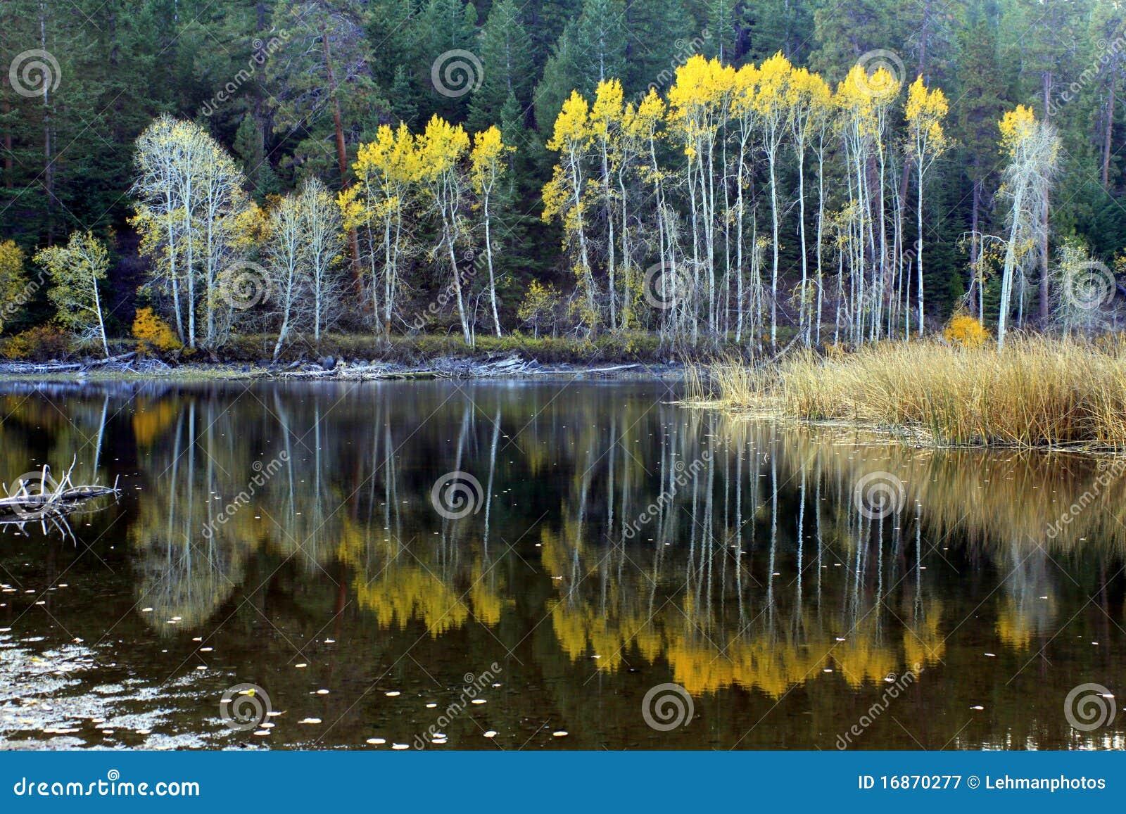 Reflexões do lago autumn