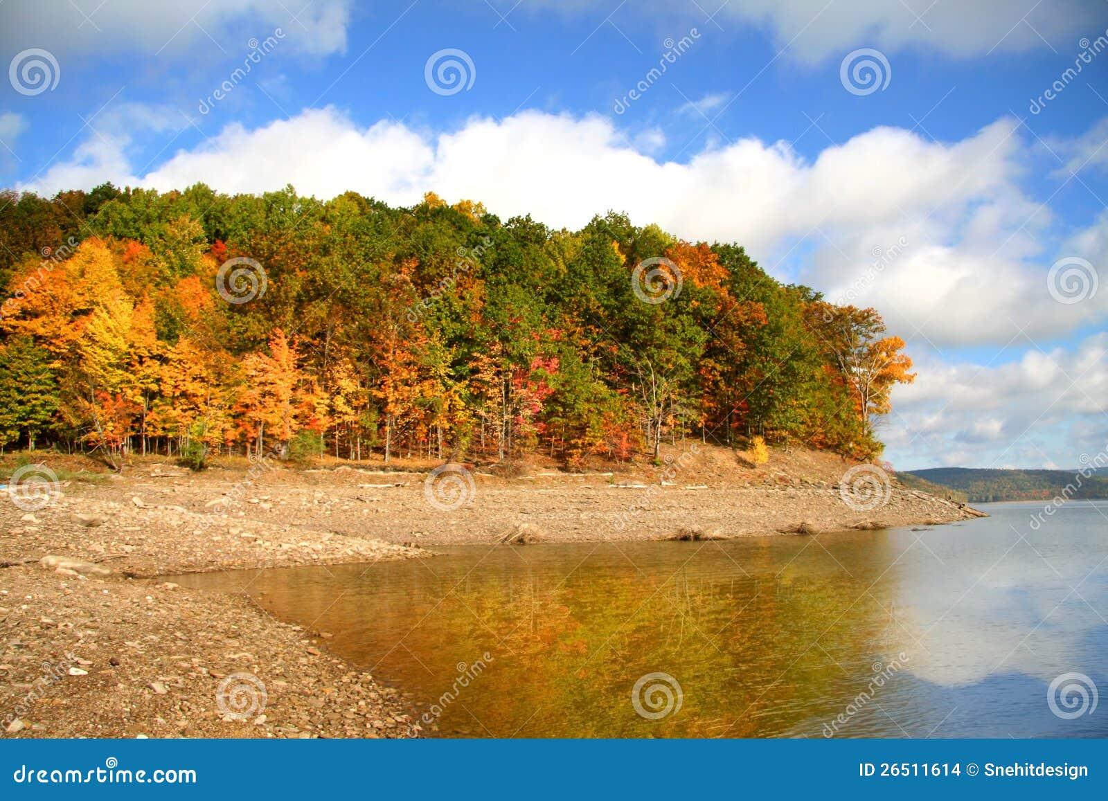 Reflexões do outono