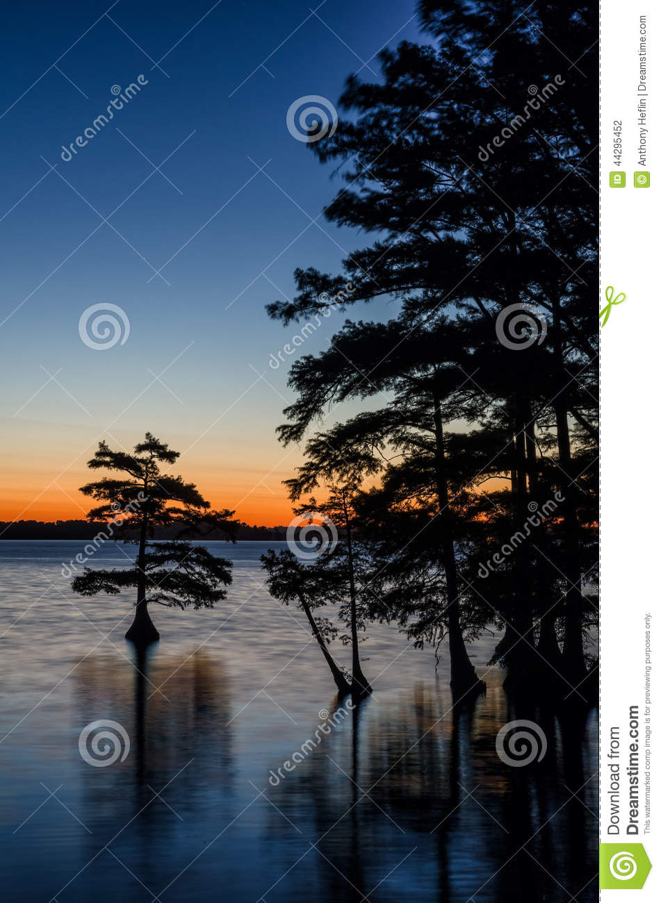 Reflexões do Predawn, lago Reelfoot, Tennessee