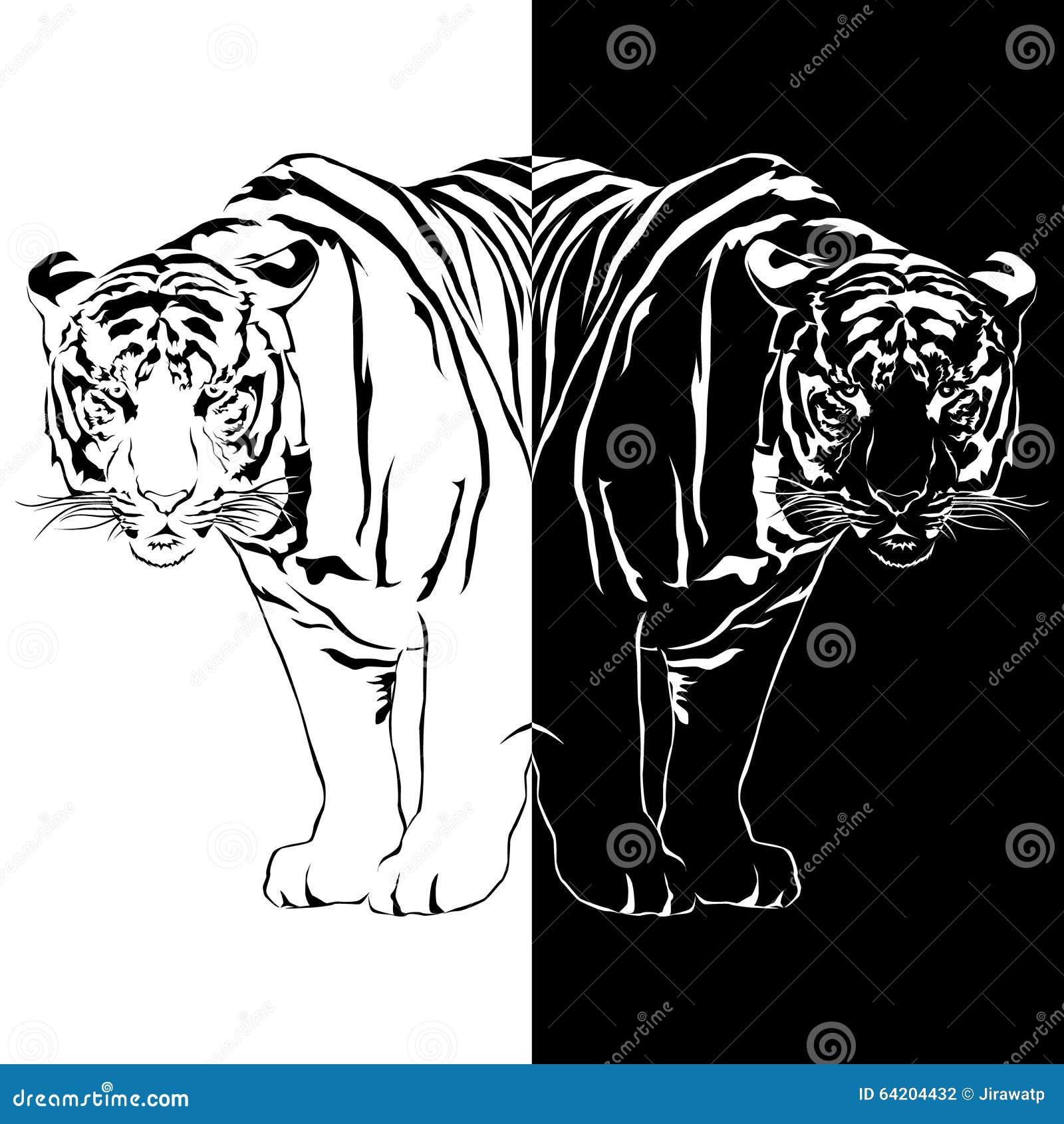 Reflexión blanco y negro del tigre
