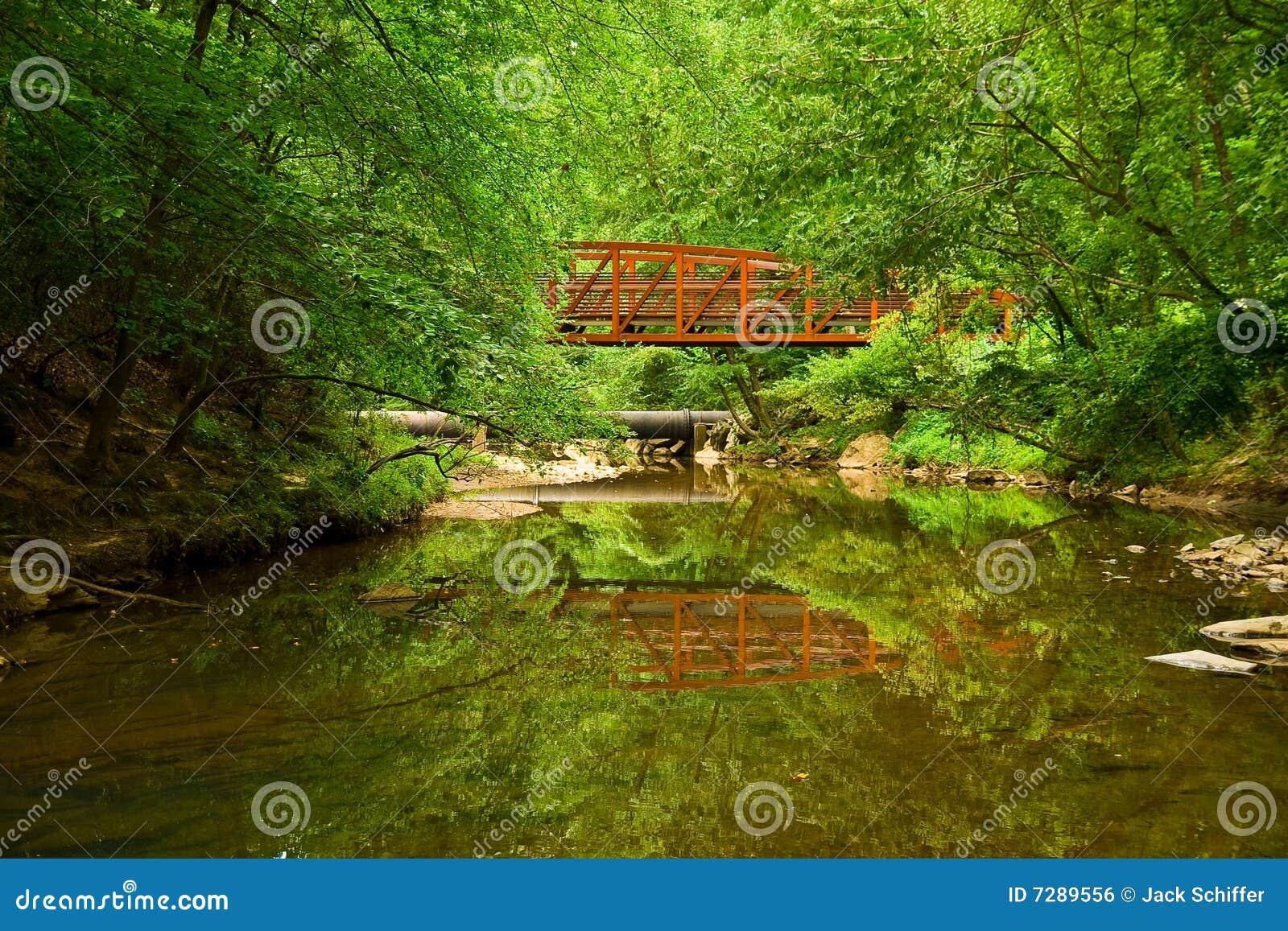 Reflexión de las naturalezas