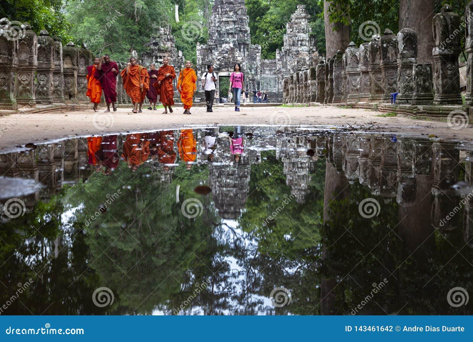 Reflexión de los monjes budistas en el agua