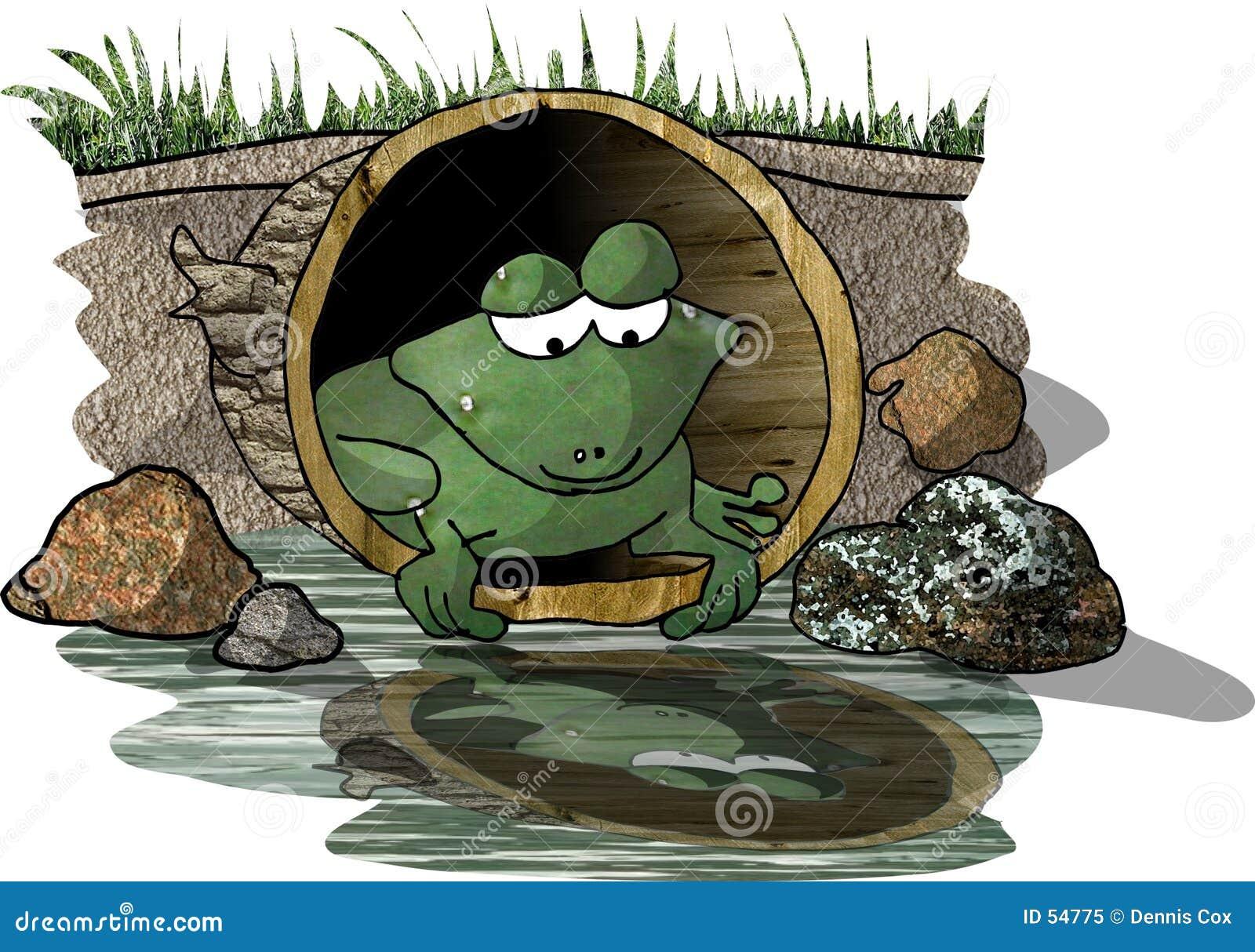 Reflexión de una rana