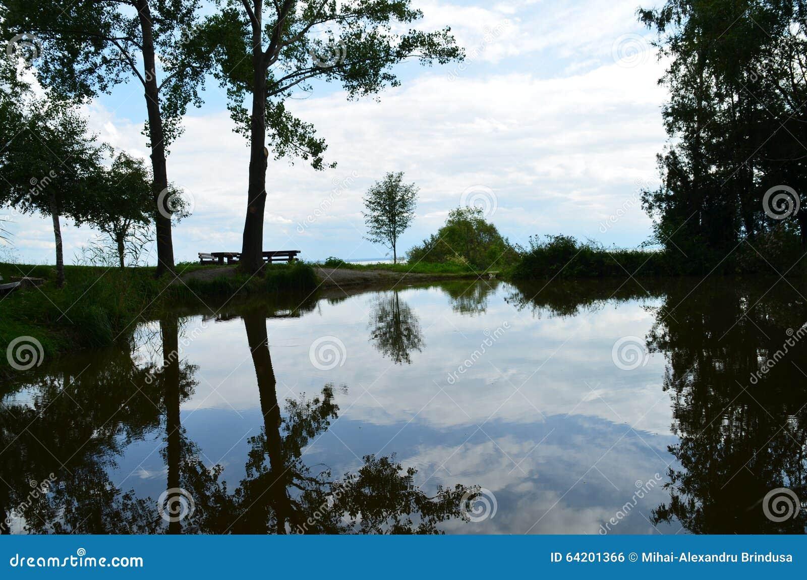 Reflexión del agua