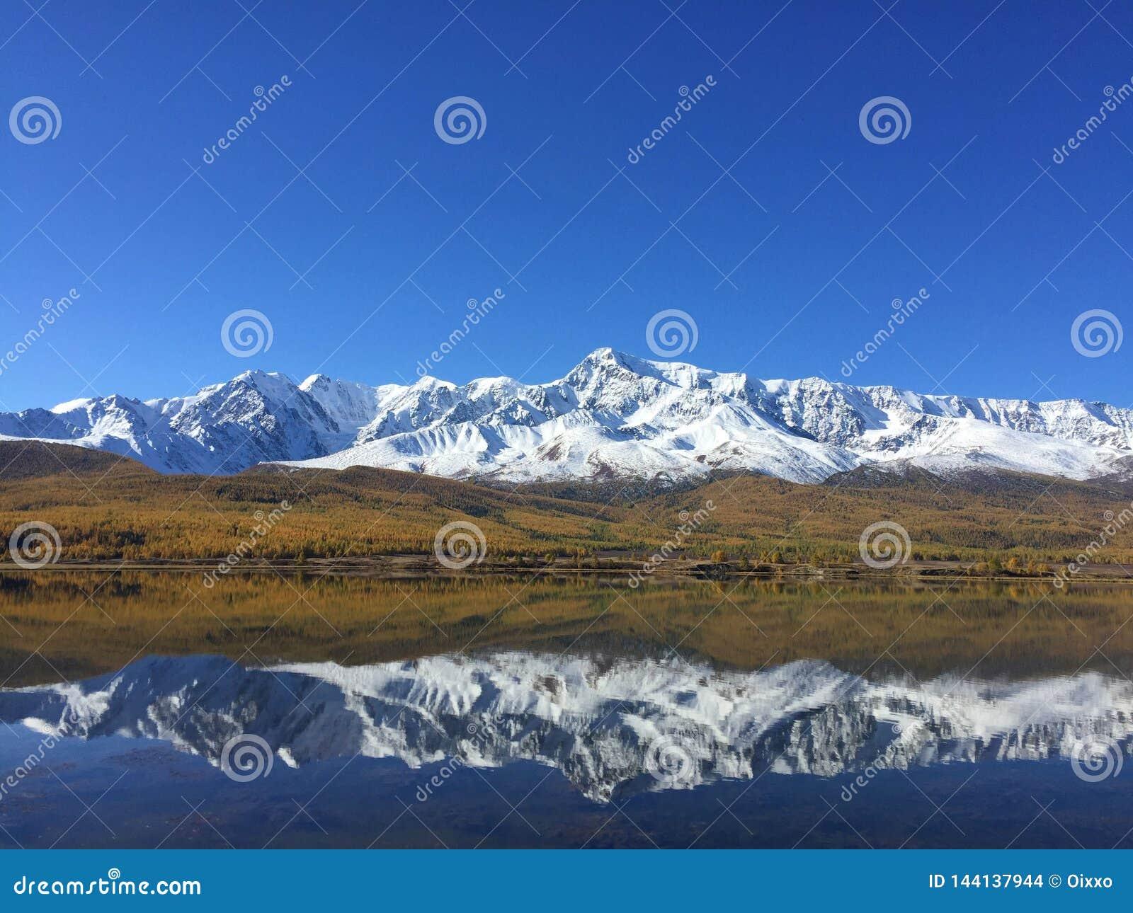 Reflexión del lago del espejo de las montañas Paisaje asombroso de la montaña Montañas de Altai Estepa de Kurai Lago Dzhangyskol