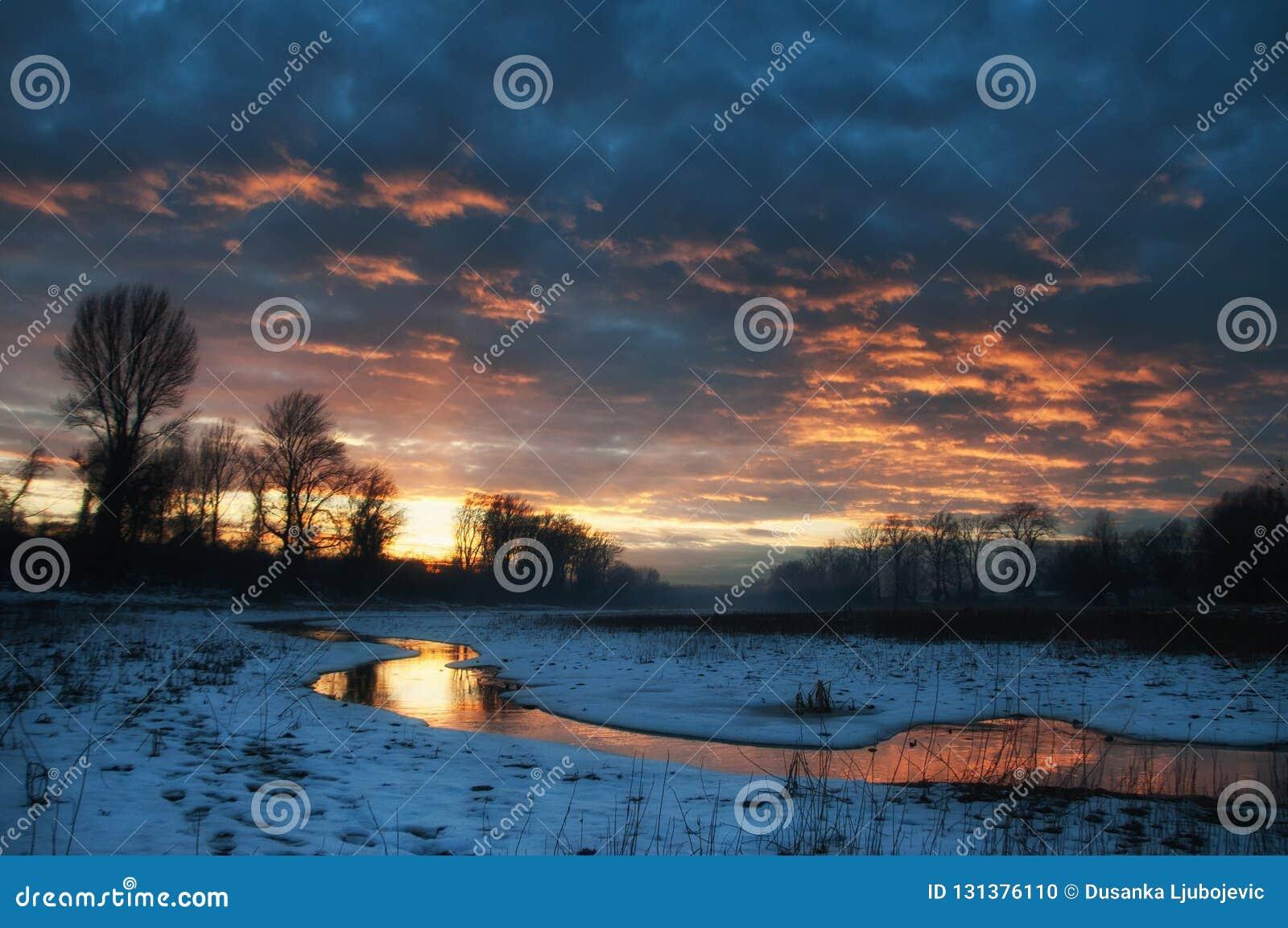 Reflexion der Sonne und des Himmels im Sumpf