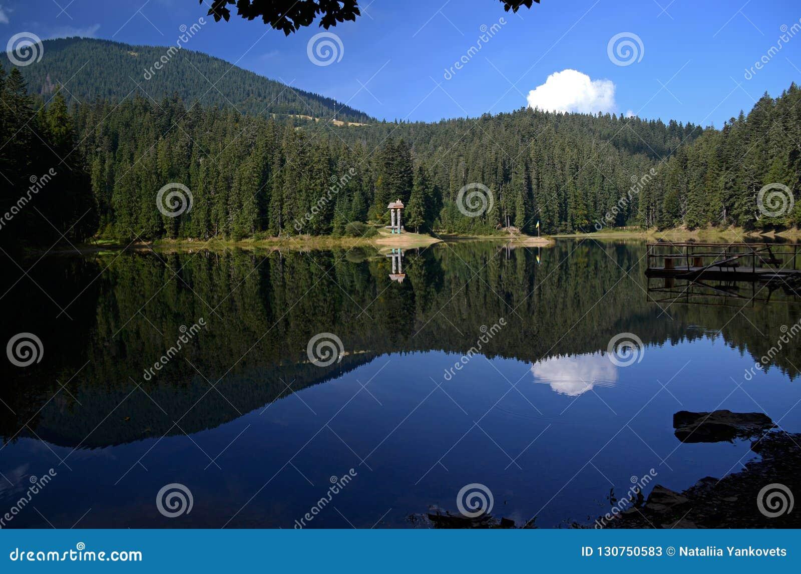 Reflexionen av den blåa himlen, bergen och pinjeskogen i den alpina sjön Synevyr i ukrainska Carpathians