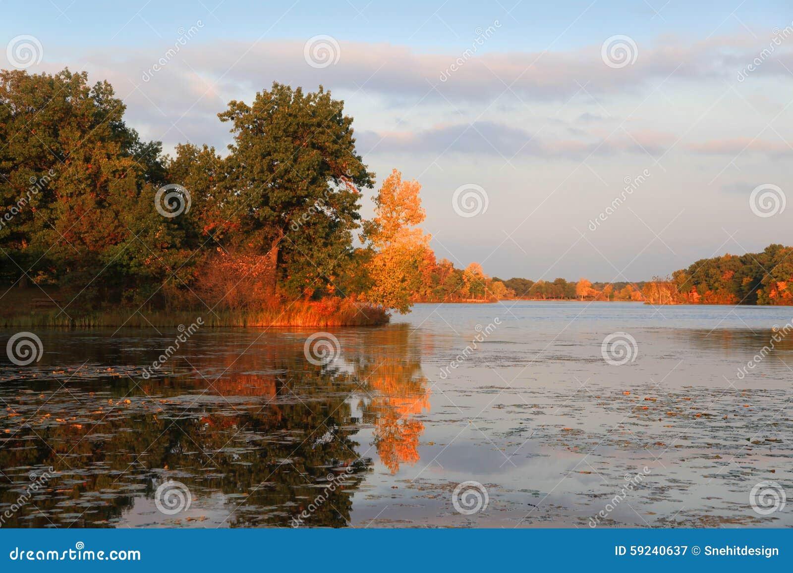 Download Reflexiones Del árbol Del Otoño Imagen de archivo - Imagen de árbol, paisaje: 59240637