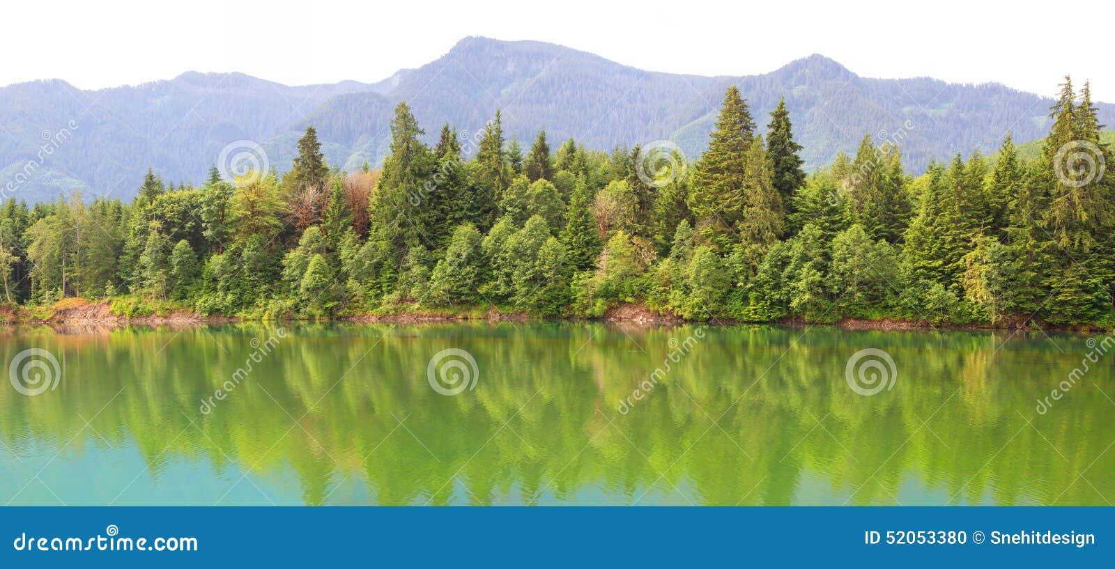 Reflexiones del río de Cowlitz